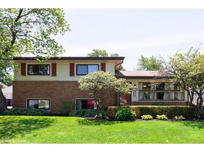 179 N Pamela Drive Chicago Heights, IL MLS# 10415346
