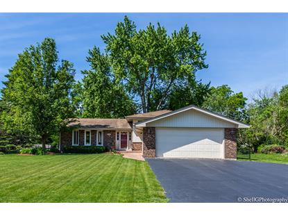 700 Tanglewood Lane Frankfort, IL MLS# 10416570