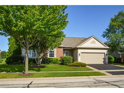 13153 FARM HILL Drive Huntley, IL MLS# 10418414