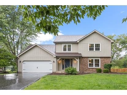 1325 Goldenrod Drive Naperville, IL MLS# 10451471