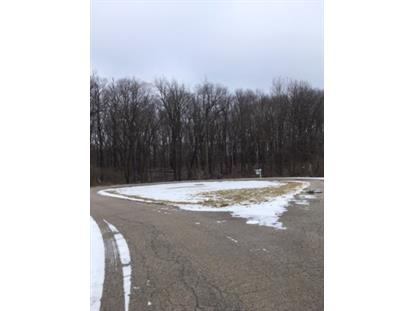 2220 Anne Lane Crete, IL MLS# 10565873