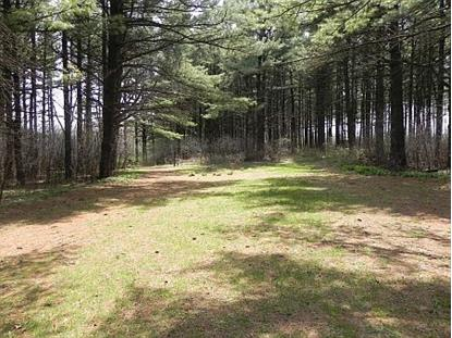 Lot 1 Pine Street Burlington, WI MLS# 10567033