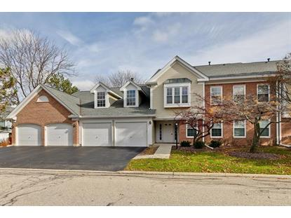 1407 Orange Court Mount Prospect, IL MLS# 10568221