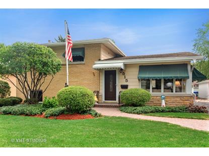 515 North Elmhurst Avenue Mount Prospect, IL MLS# 10568915