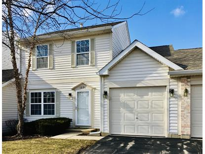 1231 North Village Drive Round Lake Beach, IL MLS# 10633610