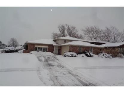 20001 Park Avenue Lynwood, IL MLS# 10637815