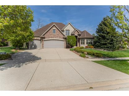 21347 South Wooded Cove Drive Elwood, IL MLS# 10728502