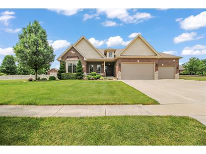 21358 South Wooded Cove Drive Elwood, IL MLS# 10756460