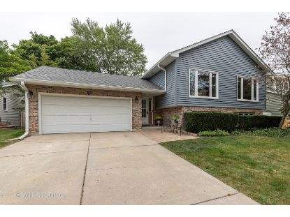 259 Robincrest Lane Lindenhurst, IL MLS# 10838751