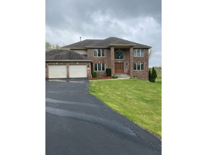 3311 E Forestview Trail Crete, IL MLS# 10905009