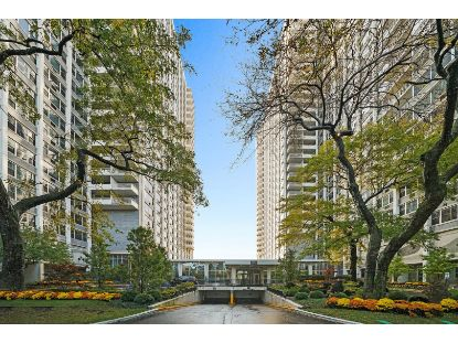 4250 N Marine Drive Chicago, IL MLS# 10915823
