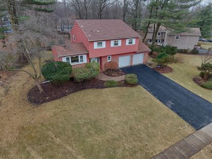 15 Holly Drive, Parsippany, NJ