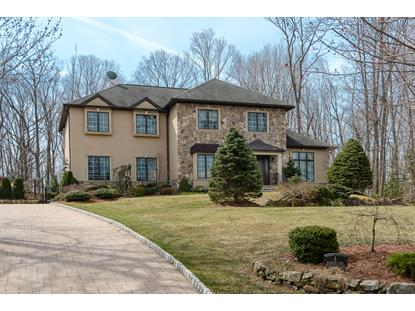 5 Blanchard Court Randolph, NJ MLS# 037013034