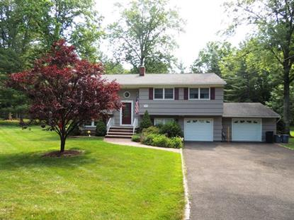 209 Northfield Rd., Millington, NJ
