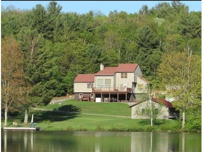 179 SPARROWHAWK LAKE RD Schenevus, NY MLS# 201608746