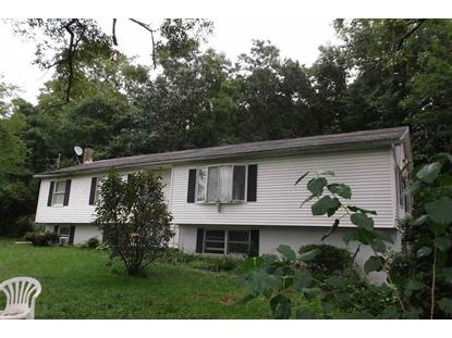 314 NEVERSINK DR. Port Jervis, NY MLS# 201829315