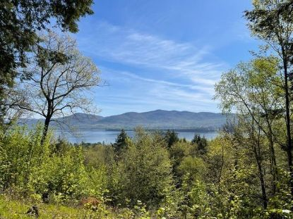 3513 LAKE SHORE DR Lake George, NY MLS# 202033253