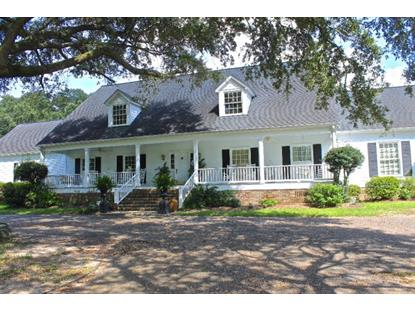 11555 Jeff Hamilton Road  Mobile, AL MLS# 246126