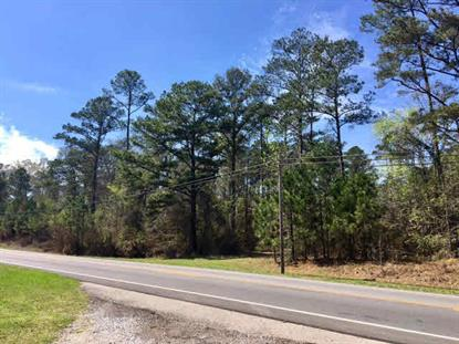 0 Highway 31  Brewton, AL MLS# 250603