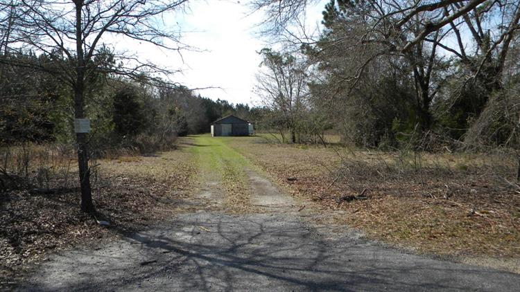 0241 Rock Springs Road, Early Branch, SC 29916