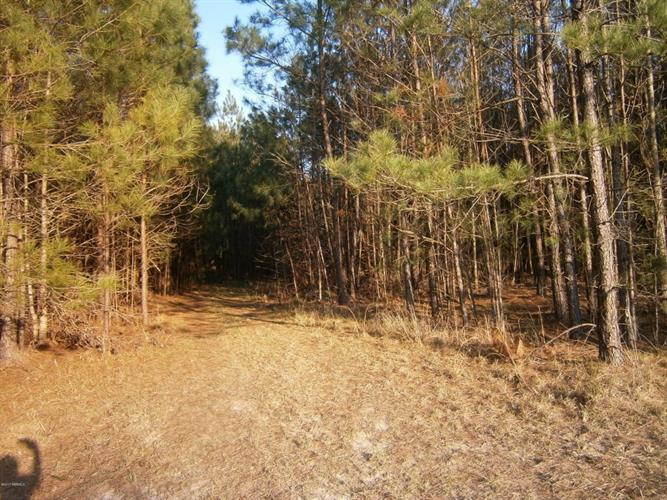 Tbd2 Off Speedway Boulevard, Hardeeville, SC 29927 - Image 1