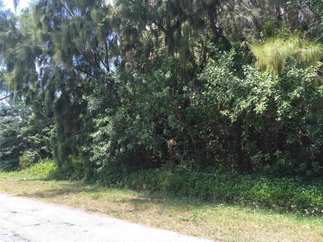 Xxx NW Avocado Road, Palm Bay, FL 32907