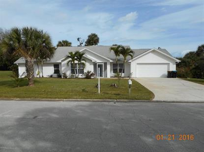 1127 NE Treebark Avenue, Palm Bay, FL
