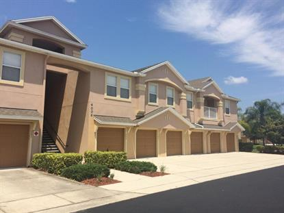 4006 Meander Place Rockledge, FL MLS# 800305