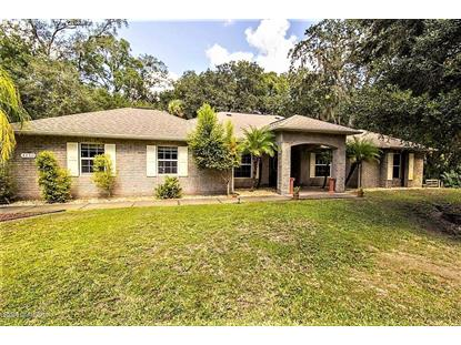 4450 Windsor Court, Mims, FL