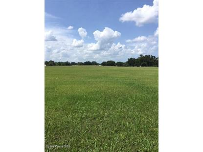 0000 Burkholm Road Mims, FL MLS# 821841