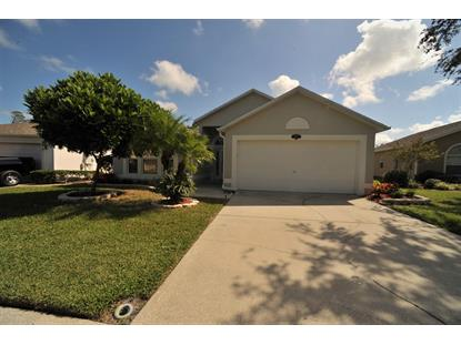 2173 NE Spring Creek Circle Palm Bay, FL MLS# 826463