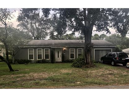 4088 Blackgum Drive Mims, FL MLS# 829018