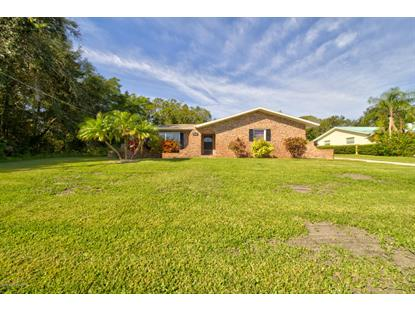 1030 Sunswept Road Palm Bay, FL MLS# 831473