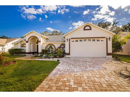 871 Hunters Creek Drive West Melbourne, FL MLS# 833707