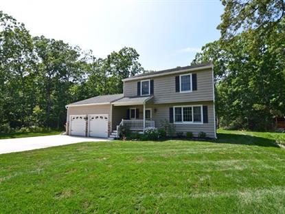 205 S Ravenwood Drive Clermont, NJ MLS# 175205