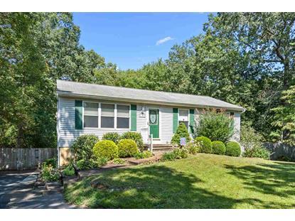 Swainton Goshen Road 130 Cape May Court House,NJ MLS#201238