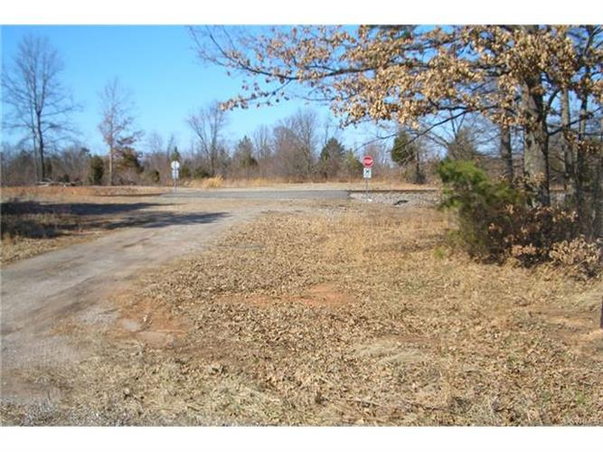 50 ACRES,  PATRICK HENRY HIGHWAY, Amelia Court House, VA 23002