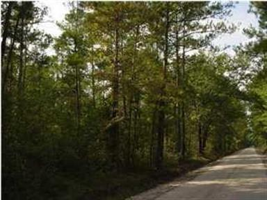Three Mile Road, Walterboro, SC 29488