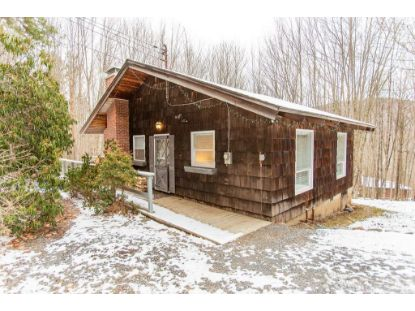 134 Denver Run Road Roxbury, NY MLS# 129249