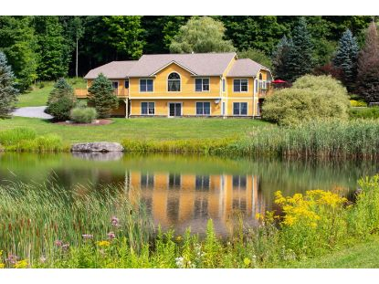 3135 Canada Hollow  Andes, NY MLS# 129333
