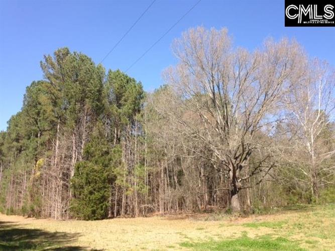 340A Old Shealy Road, Chapin, SC 29036