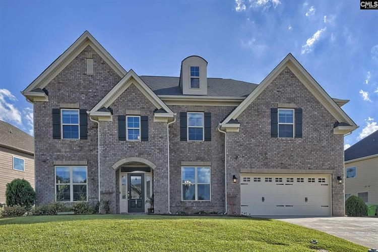 20 Mapleline Court, Chapin, SC 29036