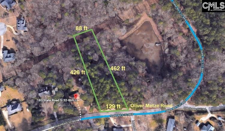 Oliver Metze Road, Lexington, SC 29072 - Image 1