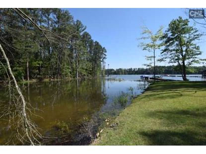459 LAKE TIDE Drive, Chapin, SC