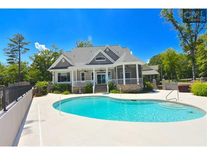 466 WOODS POINT Road Gilbert, SC MLS# 415029