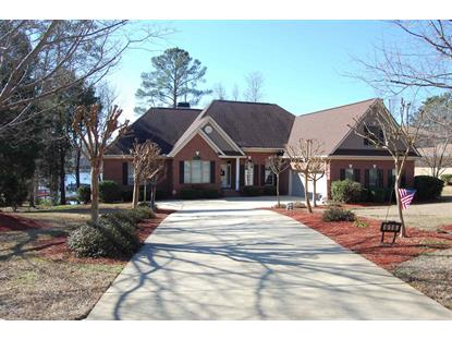Chapin Estates Homes For Sale