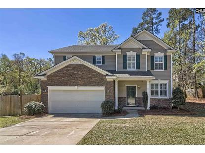210 Underwood Court, Lexington, SC