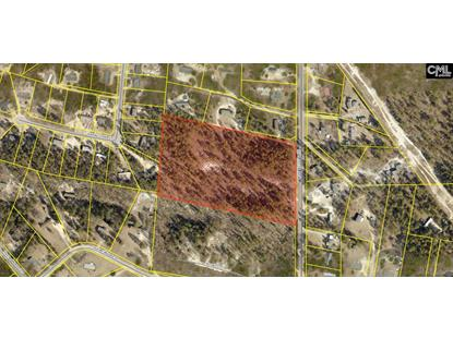 Tract P Boy Scout Road Gaston, SC MLS# 428304