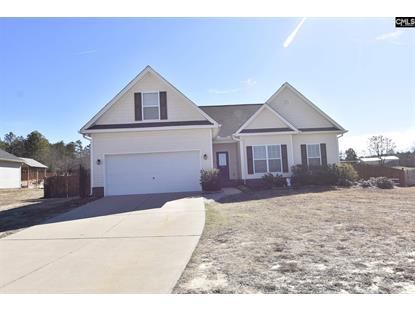 117 Switch Grass Drive, Leesville, SC
