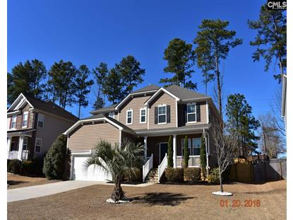 408 Plymouth Pass Drive, Lexington, SC
